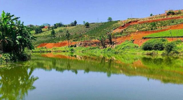 Đất Nghỉ Dưỡng Bảo Lộc View Đồi Chè
