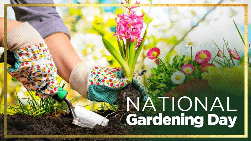 National Gardening Day Wishes Beautiful Image