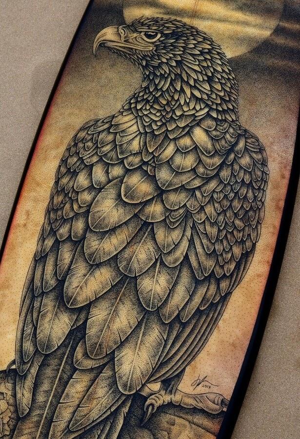 02-Eagle-Surfboard-Jarryn-Dower-www-designstack-co