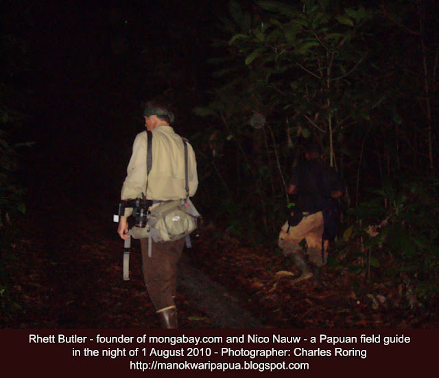 Night walk with Rhett Butler of Mongabay.com in Manokwari's forest.