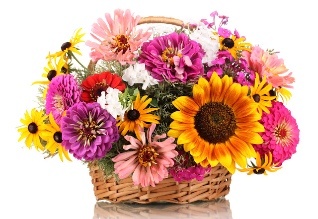 Mothers Day 2017 Flowers Baskets