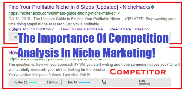 Niche Marketing Strategy Advantages