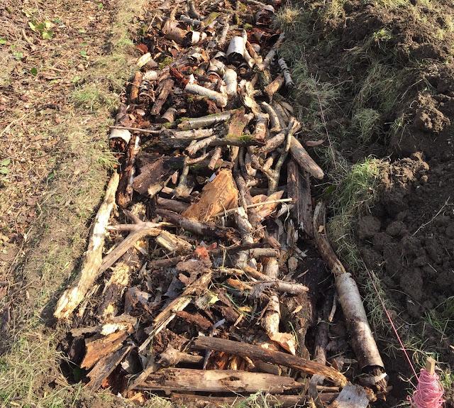 mettre au fond de la butte du bois mort, création de butte de permaculture en bois mort
