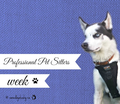 Professional Pet Sitters Week