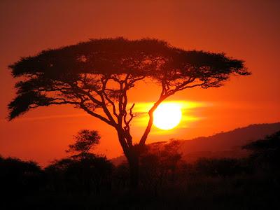 Keindahan Alam Di Kala Mentari Terbenam Di Ufuk Barat
