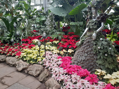 Allan Gardens Conservatory 2019 Winter Flower Show one by garden muses--not another Toronto gardening blog