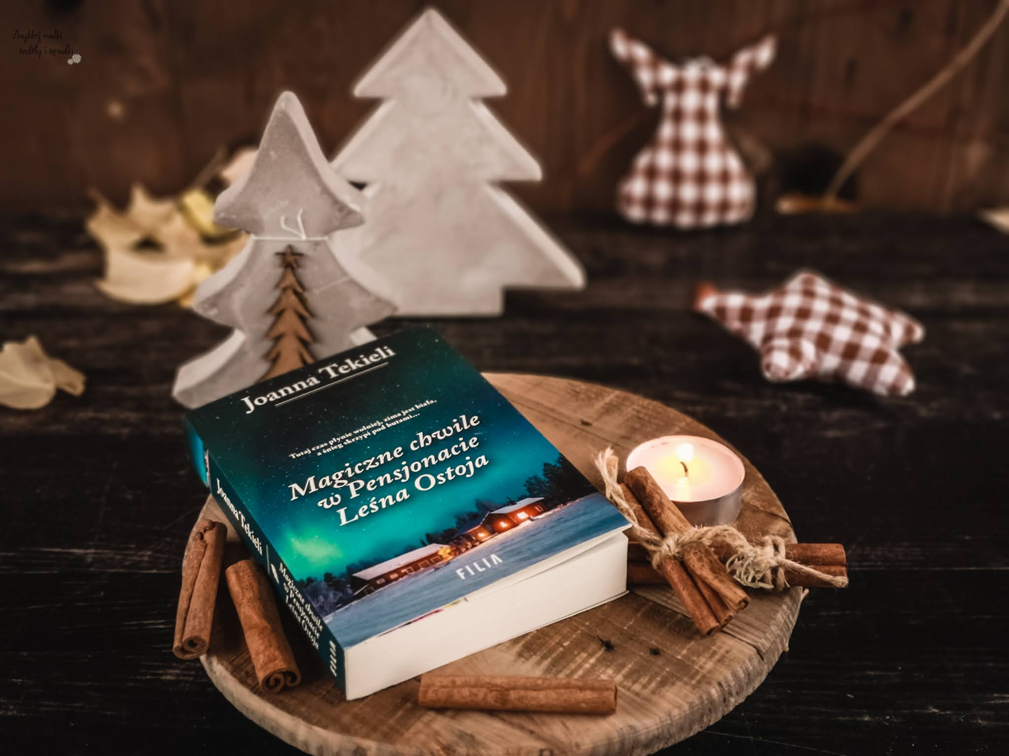 Czy kolejny powrót do Leśnej Ostoi mnie rozczarował? Czyli czas na powieści świąteczne!