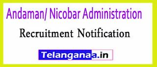 Andaman/ Nicobar Administration Recruitment Notification 2017