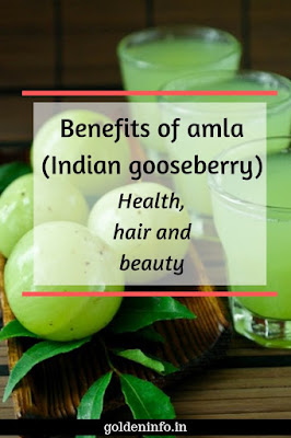 22 Benefits of amla(Indian gooseberry): Nutrition value, health, hair and beauty