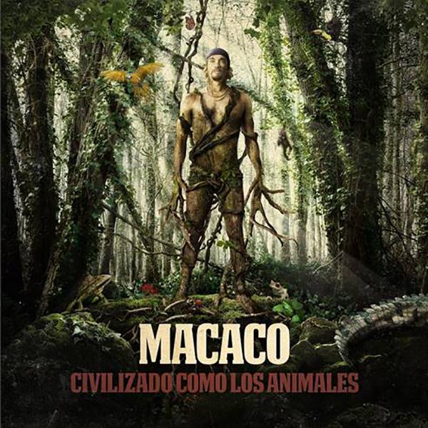 Macaco-Civilizado-como-los-animales-lanzamientos