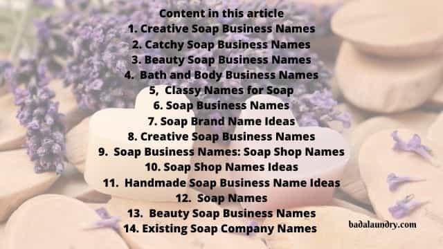 Creative Soap Business Names  (301 Soapery names)