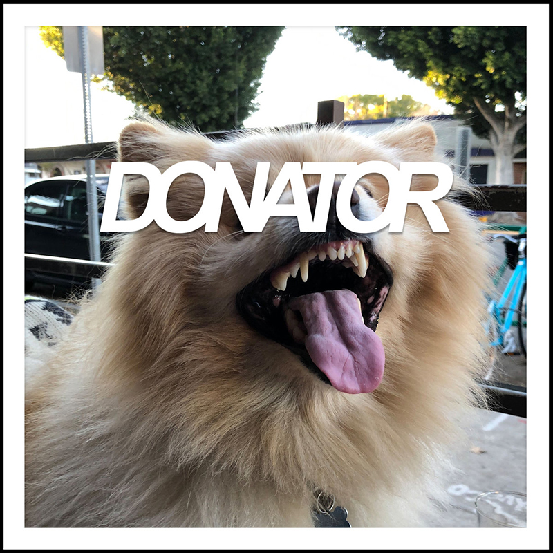 "Donator pushes bold buttons making synth waves crash on ""Dog of The Year"""