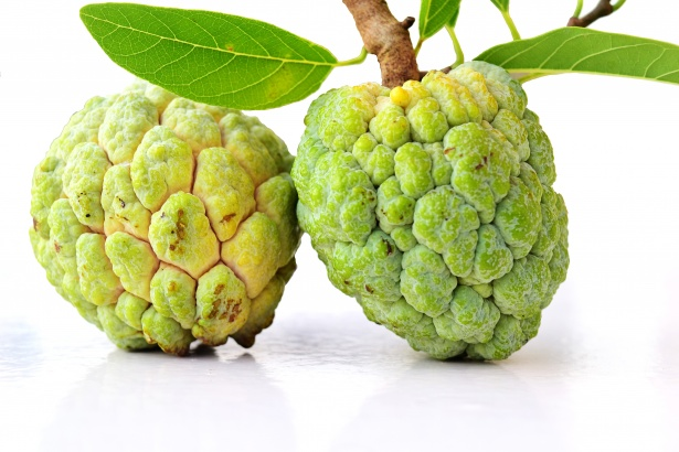 Top 11 Calcium Rich Fruits For  Bone Health Custard Apple