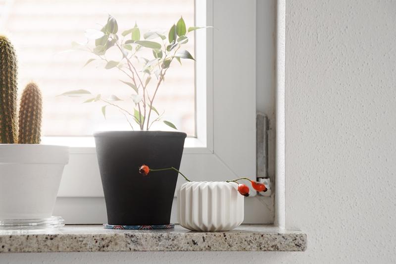 Vase mit Hagebutten als schlichte Herbstdeko