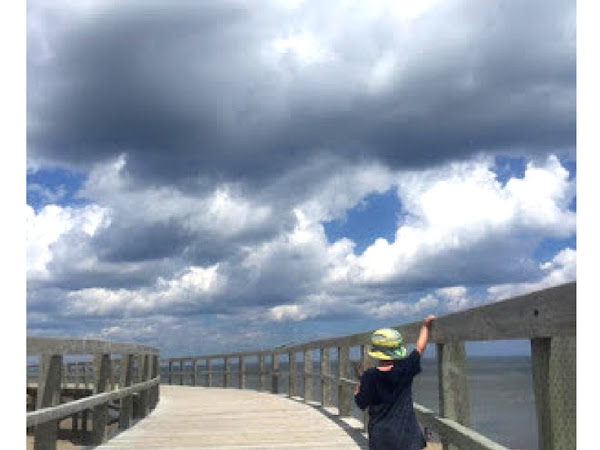 10 Day Trips To Take With The Kids This Summer (Within Driving Distance Of Fredericton!)