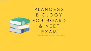 Plancess Biology for CBSE Class 12th, NEET [PDF]