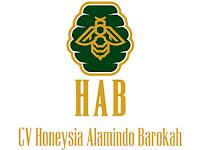 Lowongan Kerja Content Creator di CV. Honeysia Alamindo Barokah - Yogyakarta