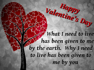 Cute Valentineu0027s Day SMS
