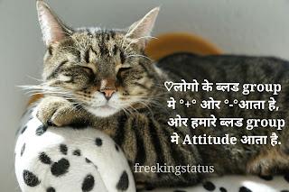 High attitude status in hindi,attitude status in hindi