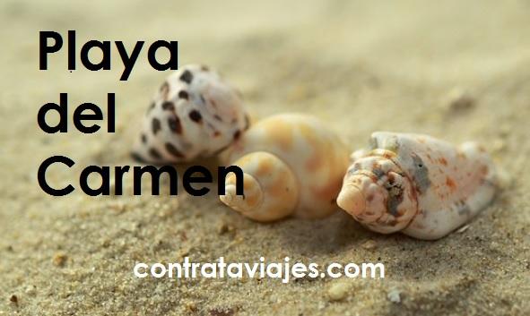 Playa del Carmen Hoteles Restautantes y que hacer