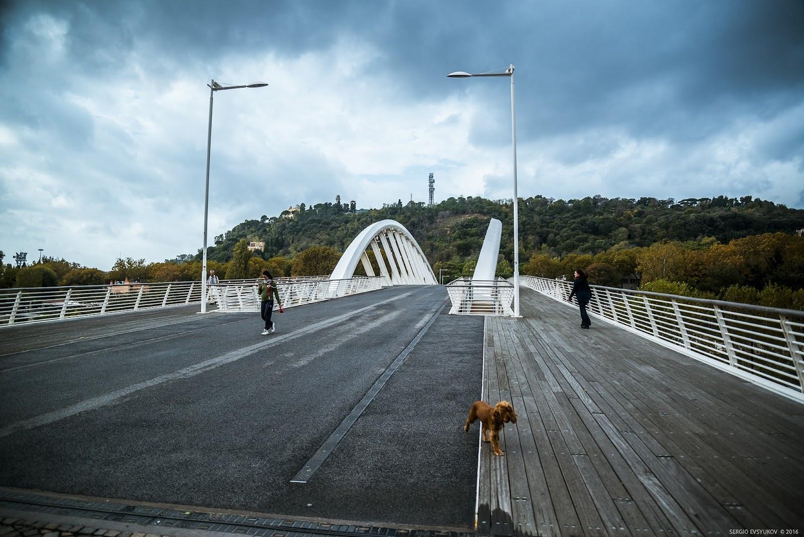 Современный пешеходный мост в Риме