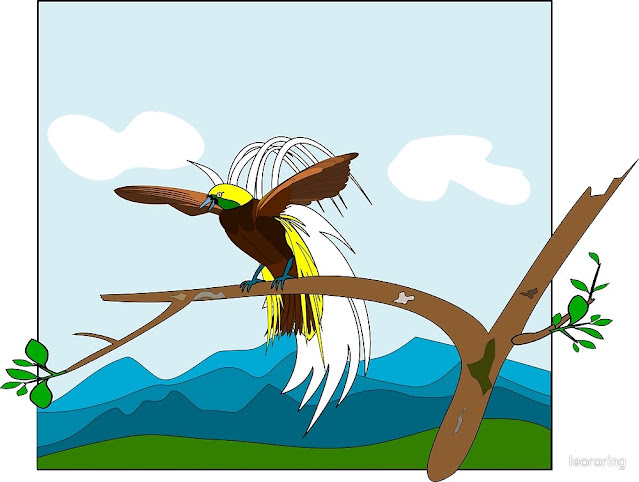 Vector drawing of Lesser Birds of Paradise (Paradisaea minor)