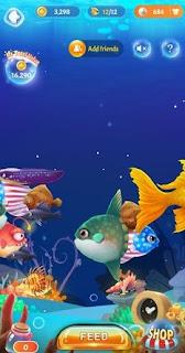 clipclaps aquarium fish evolution