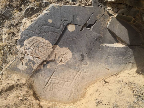 3,500-year-old petroglyphs found in Gansu, China