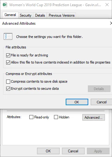 Windows Encrypting File System