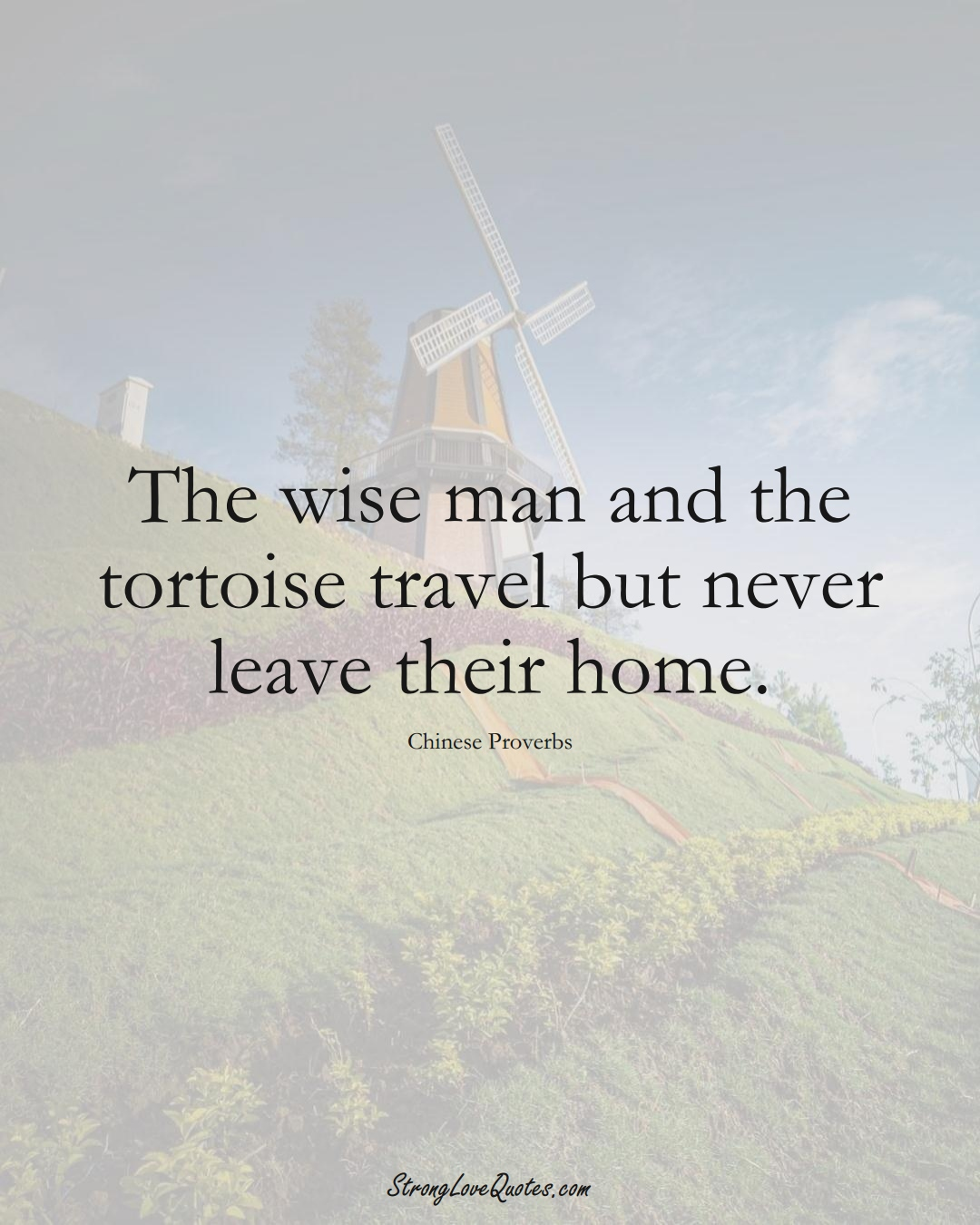 The wise man and the tortoise travel but never leave their home. (Chinese Sayings);  #AsianSayings