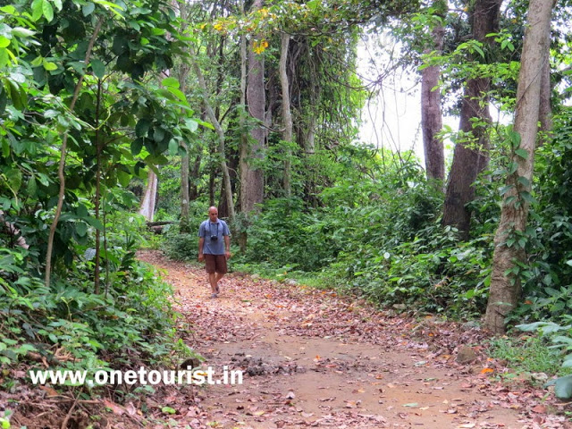 saddle peak trek andaman