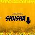 AUDIO | Baba Levo Ft. Diamond Platnumz - Shusha | Download Mp3
