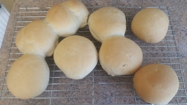 Bread Rolls for burgers made at home