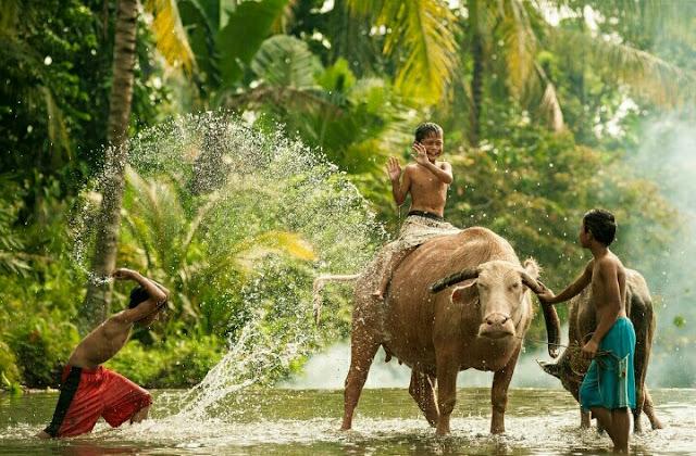 Ke Klaten, Perjalanan Mendebarkan Melihat Sumber Air Purba Berusia 1500 tahun