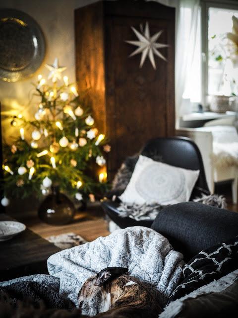 Joulukuusi koristelu