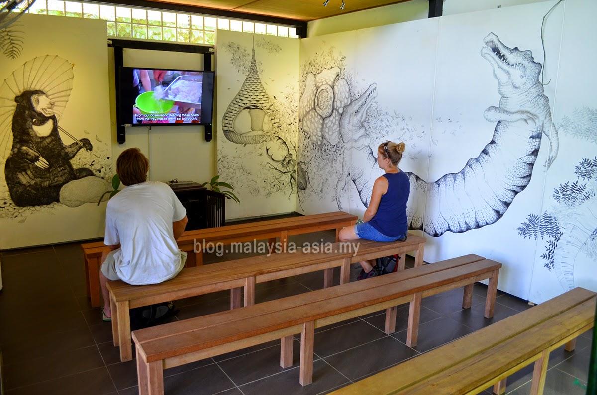 Borneo Sun Bear Centre