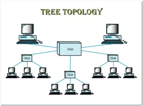 the illustration of Tree Network Topology