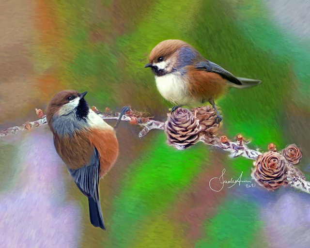 Boreal Chickadees Painting Birds Of Newfoundland Art