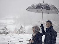头巾旅行者:穆斯林妇女被困在韩国