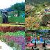 Tempat Selfie dan Wisata Renang di Barusen Hills, Gambung, Ciwidey