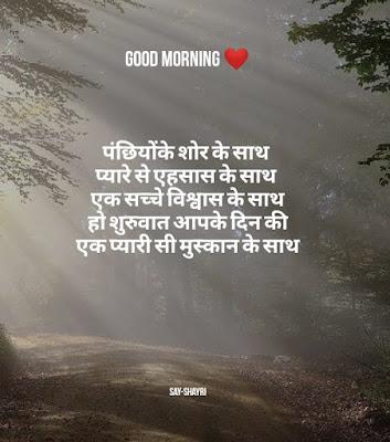Good morning shayari - पंछियों का शोर