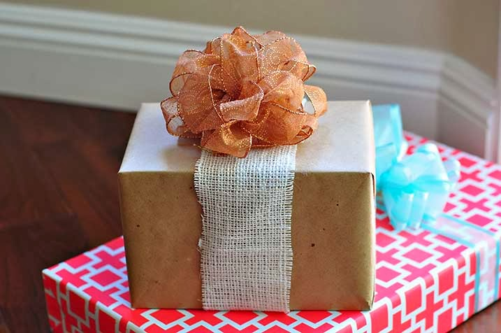 The Cheese Thief How To Make Pretty Puffy Bows And A Giveaway
