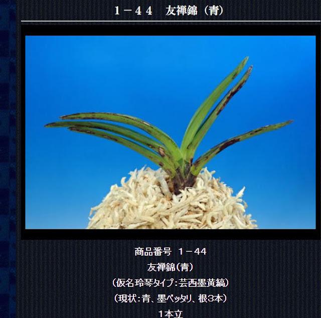 http://www.fuuran.jp/1-44.html