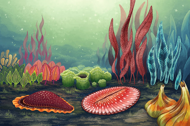 Life in the Precambrian may have been much livelier than previously thought
