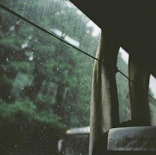 Obrolan Angin, Hujan dan Pohon