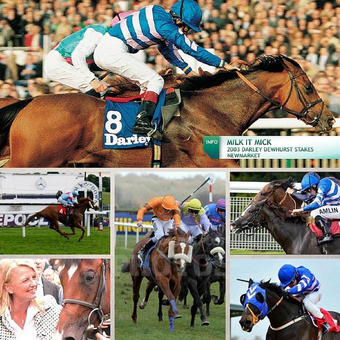 Racehorse bloodstock