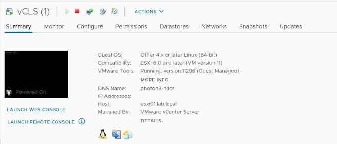 Introduction to vSphere Cluster Services (vCLS) in vSphere 7 Update 1
