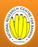 ICAR-National Research Centre for Banana Trichy Recruitment 2018 SRF and Young Professional Post