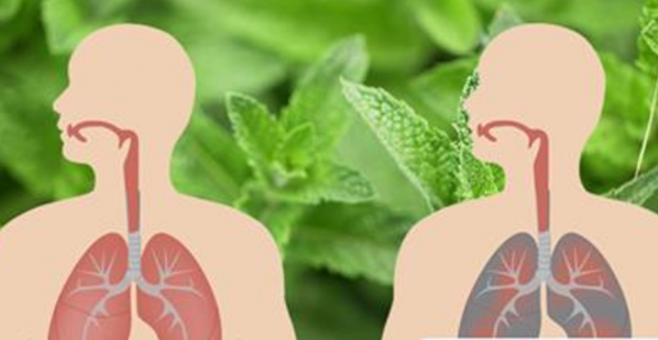 How To Eliminate Mucus And Kill Lung Infections Naturally