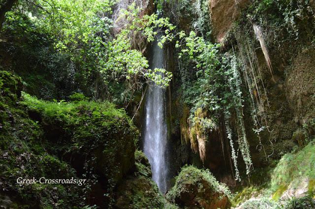 Νεμούτα Αρχαίας Ολυμπίας: Ο επίγειος παράδεισος (βίντεο)